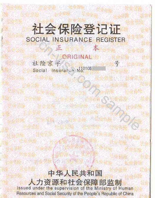 Chinese visa application letter template \ Funny thesis comic on italy study, italy visa information, italy tourism, italy tourist visa, italy visa requirements, italy visa application letter sample, italy business,